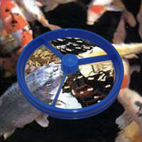 Feeding ring water gardening direct for Fish feeding ring