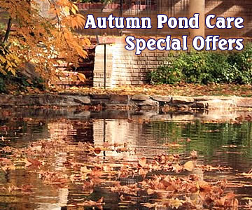 Autumn Pond Care - Special Offers